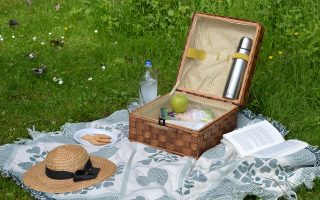 Summer Celebration – Picnic in the Park