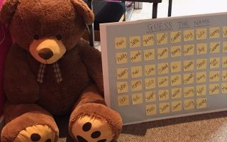 Guess the Name of the Teddy